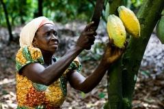 women-in-cocoa