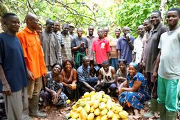 Conservation Cocoa Association applauds government for free inputs